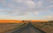 camino al campo