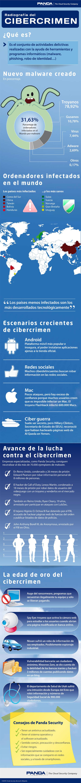 radiografia del cibercrimen